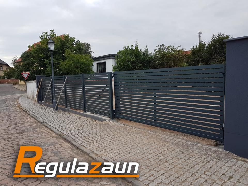 Regula-Zaun14